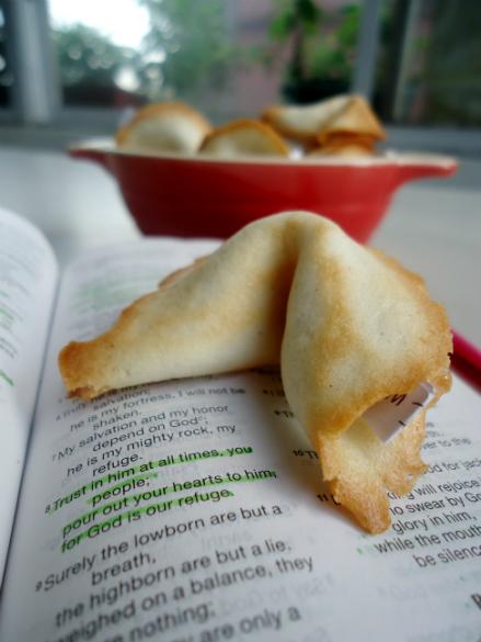 fortune cookies (11)