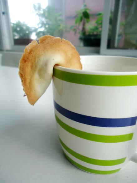 fortune cookies (6)