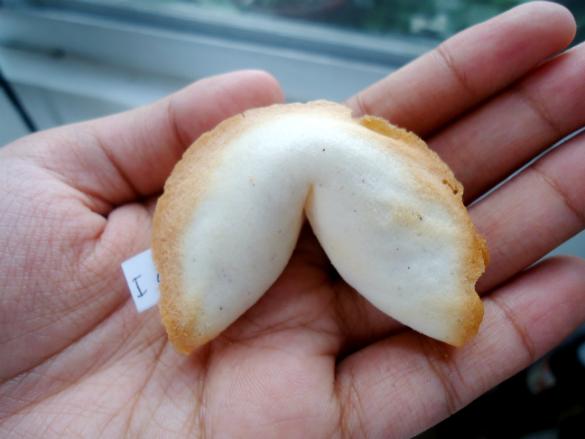 fortune cookies (9)