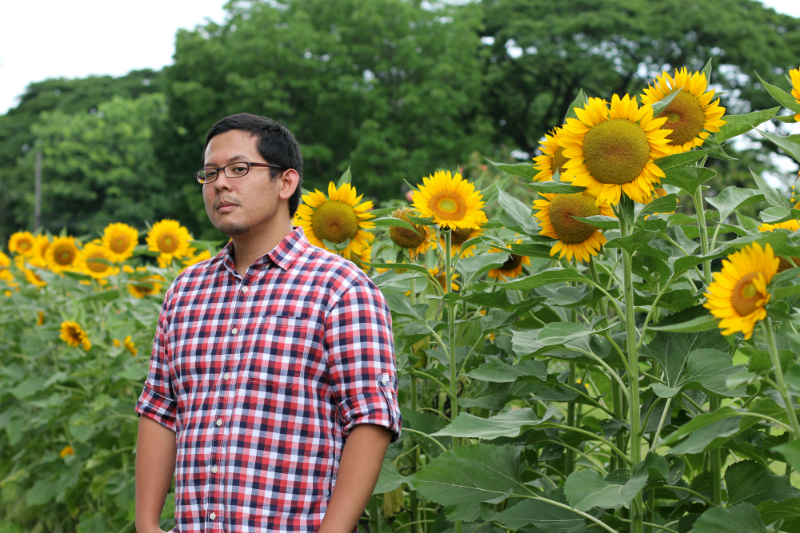 Sunflowers at UP Diliman (13)
