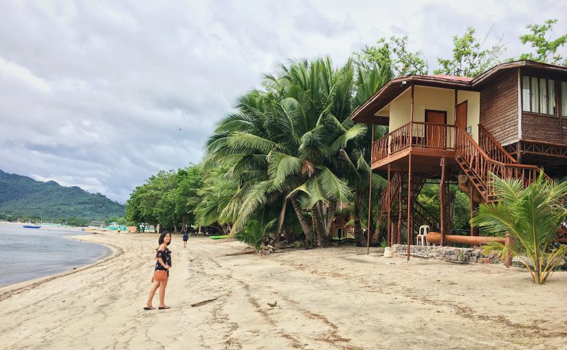 8 Things to Consider before Going to Laiya Coco Grove